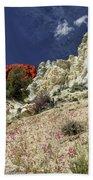 Springtime At Red Rock Canyon Bath Towel