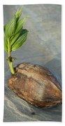 Sprouting Coconut Bath Towel