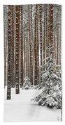 Spruce Among The Pines Bath Towel