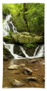 Spruce Flats Falls 2 B Hand Towel