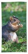 Squirrel Eating A Nut - Eugene Oregon Bath Towel
