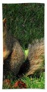 Squirrel Eating Pizza Bath Towel