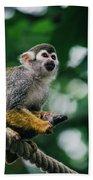Squirrel Monkey Looking Up Bath Towel