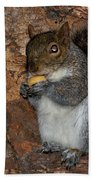 Squirrell Bath Towel