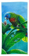 St. Lucia Parrot And Bwa Pain Marron Bath Towel