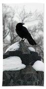 Crow Stance On Cold Stone Bath Towel