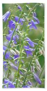 Stand Of Bluebells Bath Towel by Barbara St Jean