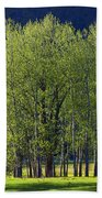 Stand Of Trees Yosemite Valley Bath Towel