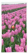 Stand Out Bath Towel