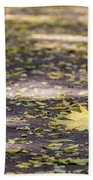 Standing Out From The Crowd Bath Towel