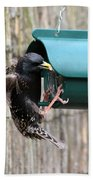 Starling On Bird Feeder Bath Towel