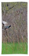 Starling Take-off Hand Towel