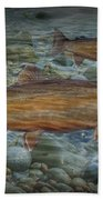 Steelhead Trout Fall Migration Bath Towel