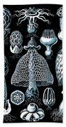 Stinkhorn Mushrooms Vintage Illustration Bath Towel