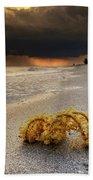 Storm And Sea Shell On Sanibel Bath Towel