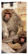 Kathmandu Street Monkeys  Hand Towel