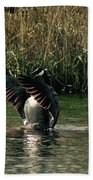 Stretching My Wings Bath Towel