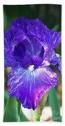 Striped Blue Iris Hand Towel