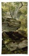 Study From Nature   Rocks And Trees Bath Towel