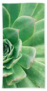 Succulents II Bath Towel