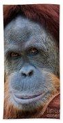 Sumatra Orangutan Portrait Bath Towel