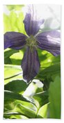Summer Clematis In Light Shade Bath Towel