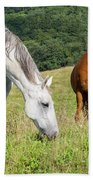 Summer Evening For Horses Hand Towel