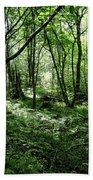 Summer Forest On A Sunny Day Bath Towel