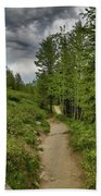 Summer Hike And Storm Clouds Bath Towel