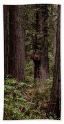 Summer In Redwood National Park Vertical Bath Towel