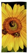 Sunflower And Bees Hand Towel