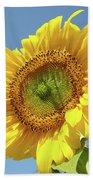 Sun Flowers Garden Art Prints Baslee Troutman Bath Towel