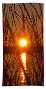 Sun In Reeds Bath Towel