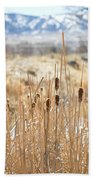 Sun Kissed Cattails - Casper Wyoming Bath Towel