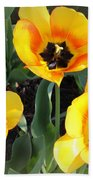 Tulips Kissed By The Sun Bath Towel