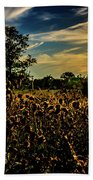 Sun Setting At Valley Forge Bath Towel