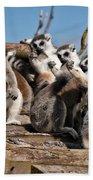 Sunbathing Ring-tailed Lemurs Bath Towel