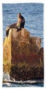 Sunbathing Sea Lion Bath Towel