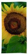 Sunflower 2017 9 Bath Towel