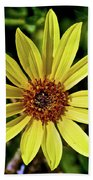 Sunflower Along Etiwanda Falls Trail In San Gabriel Mountains-california  Bath Towel