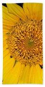 Sunflower At Dusk Bath Towel