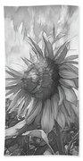 Sunflower Dawn Black And White Drawing Bath Towel