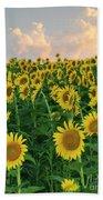Sunflower Faces At Sunset Bath Towel
