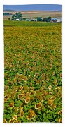 Sunflower Farm In Northwest North Dakota  Bath Towel