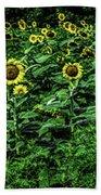 Sunflower Field Panorama Bath Towel