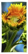 Sunflower Glory Bath Towel