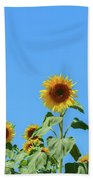 Sunflowers On Blue Bath Towel