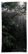 Sunlight Falling Into Glen With Bright Leaves, Vertical Bath Towel