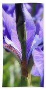 Sunlight On Blue Irises Hand Towel