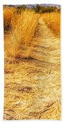 Sunlit Grasses Bath Towel